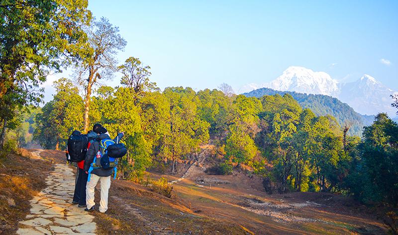 Heaven on Earth: Ghorepani-Poon Hill Trek