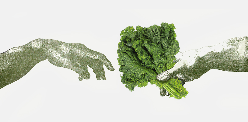 Vegucated: Why I chose to become a vegan