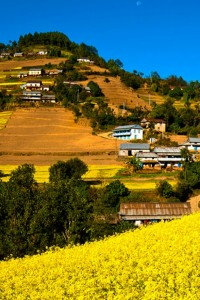 In 6 photos: Resplendent Lalitpur