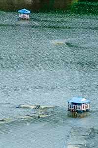 Indra Sarovar: The lake is 'artificial', but its beauty is natural