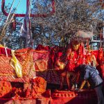 Pathibhara, Nepal's revered pilgrimage site, is open to visitors after 5 months