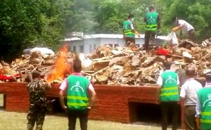 Nepal burns stockpile of body parts of wild animals seized from poachers, smugglers