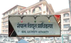 Nepal Electricity Authority launches online bill payment system