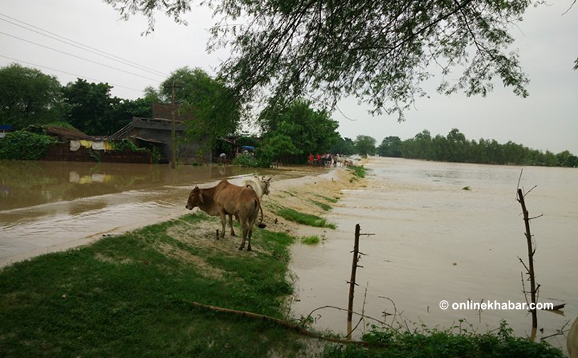 Red Cross responds as floods and landslides affect 100000 people in Nepal