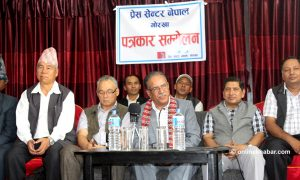 Poll partnership with any party is possible, but not Naya Shakti: Dahal