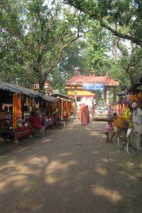 Trip to Gadhimai: A profound experience evoking awe and wonder