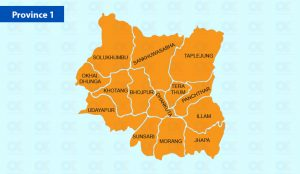 Province 1: Two arrested for killing own fathers in Morang, Khotang