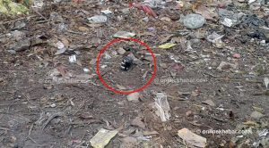 Explosive found at Pokhara Airport, defused