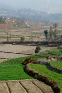 Farmlands, pagoda and sunrises: The Sankhu-Nagarkot hike