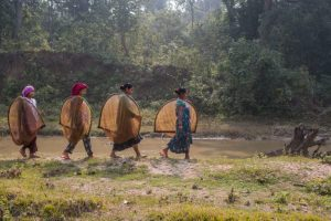 Are 'women-only' cooperatives of Nepal really empowering women?