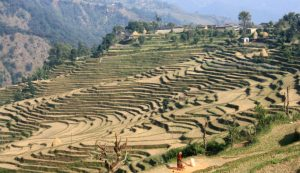 Nepal's experts are now better prepared to help communities adapt to climate change