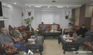 Joint panel endorses statute of unified Nepal Communist Party
