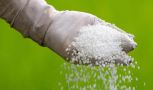 Cabinet approves proposal to borrow fertilisers from Bangladesh