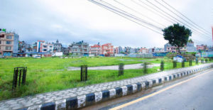 Green Spaces: Frustrated nature lovers' effort to revive greenery in Kathmandu