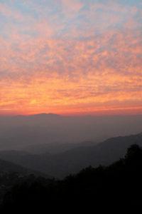 Discovering wonders of wildernesses in Kathmandu
