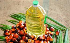 India allows palm oil import from Nepal again