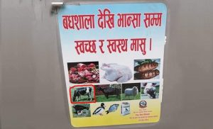 Govt features cow on 'hygienic meat' poster, withdraws after protest