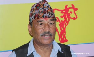 Kamal Thapa: Unified RPP will be a strong force in national politics
