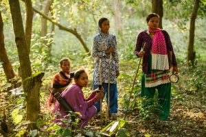 How Nepal's wildlife conservation turned participatory, landscape-centric and high-tech