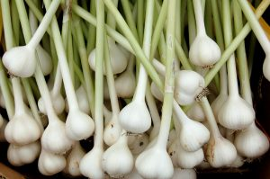6 reasons why garlic is a healthy spice to use daily