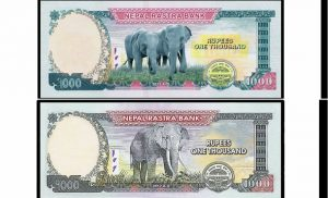 This is why Nepal changed elephant picture on 1,000-rupee notes
