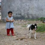 Lessons from a dog and implications for humanity
