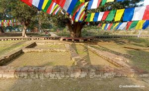 Listing Tilaurakot, palace of Buddha's father in Nepal, as World Heritage site: Here is evidence found so far