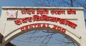Nepal's Central Zoo reopens after 9 months of Covid-19 closure