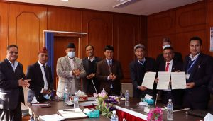 Kathmandu city partners with NEA, DoR to illuminate streets