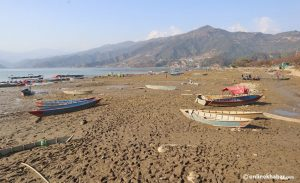 Phewa lake dried up drastically after decades. Locals suspect foul play, but authorities call for calm