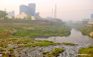 Sirsia, once the revered river of southern Nepal, is an exemplar of water pollution today
