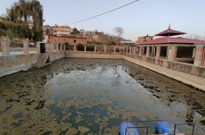 The only surviving pond in a village of seven ponds on Kathmandu's outskirts