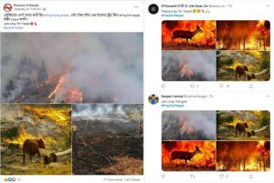 Old photos of foreign fires being circulated as Nepal wildfire photos