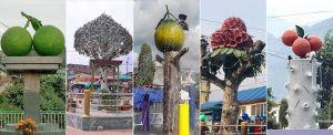 More 'trees' for less greenery: The 'concrete' irony in Nepal's cities