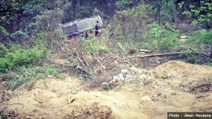 4 killed in Nawalparasi bus fall