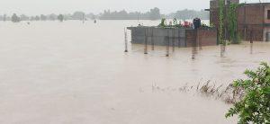 2 killed, 1 missing in Nawalparasi flood