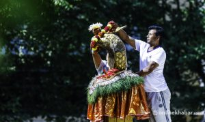 Naag Panchami: Here's what you need to know about annual serpent festival
