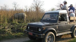 Chitwan National Park to reopen jeep safari by Sept 28